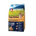 Acana Wild prairie Dog croquette pour chien