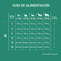 Royal canin race Dalmatien Junior croquette pour chien