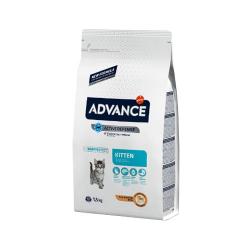 Affinity Advance-Chaton Poulet et Riz (1)