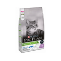 Frontline combo pipette pour chat