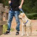Maxima Grain Free Adult croquette pour chien