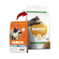Iams-Adulte Proactive au Poisson (1)