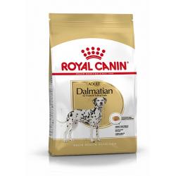 Royal Canin-Dalmatien Adulte (1)