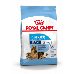 Royal Canin-Maxi Starter Gestation/Allaitement (1)