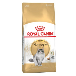 Royal Canin-Croquettes Norwegian Forest Adulte (1)