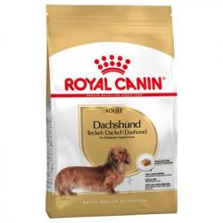 Royal Canin-Teckel Adulte (1)