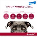 Advantix-+25 KG Pipettes Triple Protection (1)
