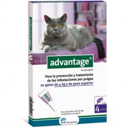 Ecuphar-Advantage 80 Chat +4 kg (1)